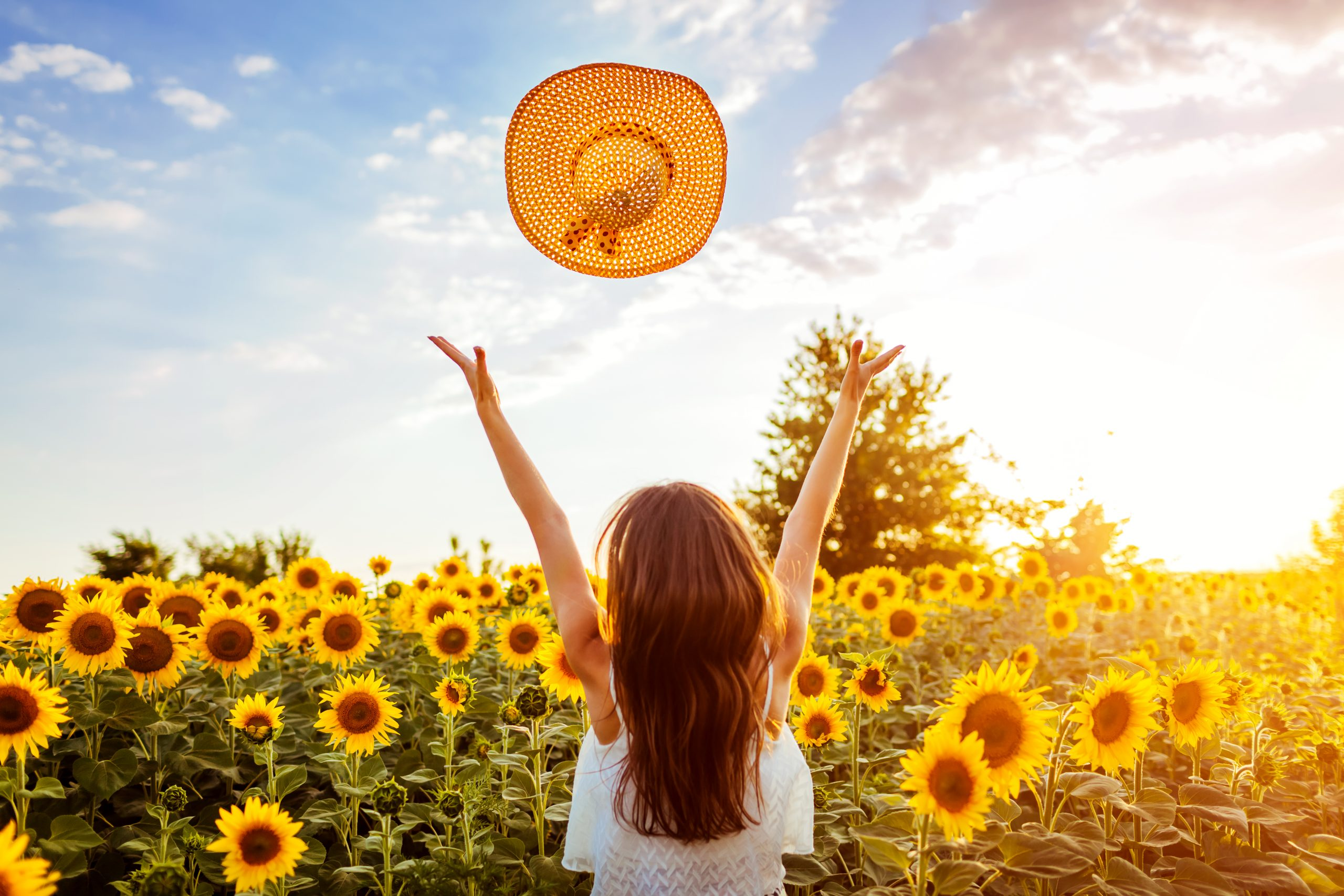 Happy young woman walking in blooming sunflower field throwing hat up and having fun. Summer vacation.